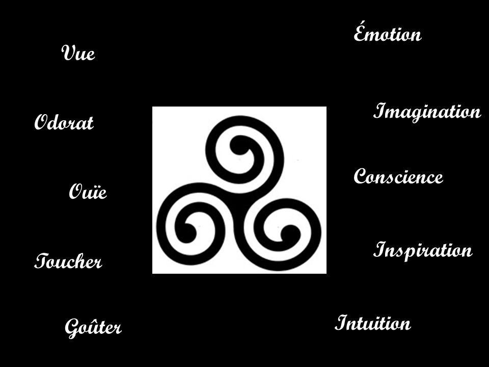 Émotion Vue Imagination Odorat Conscience Ouïe Inspiration Toucher Intuition Goûter