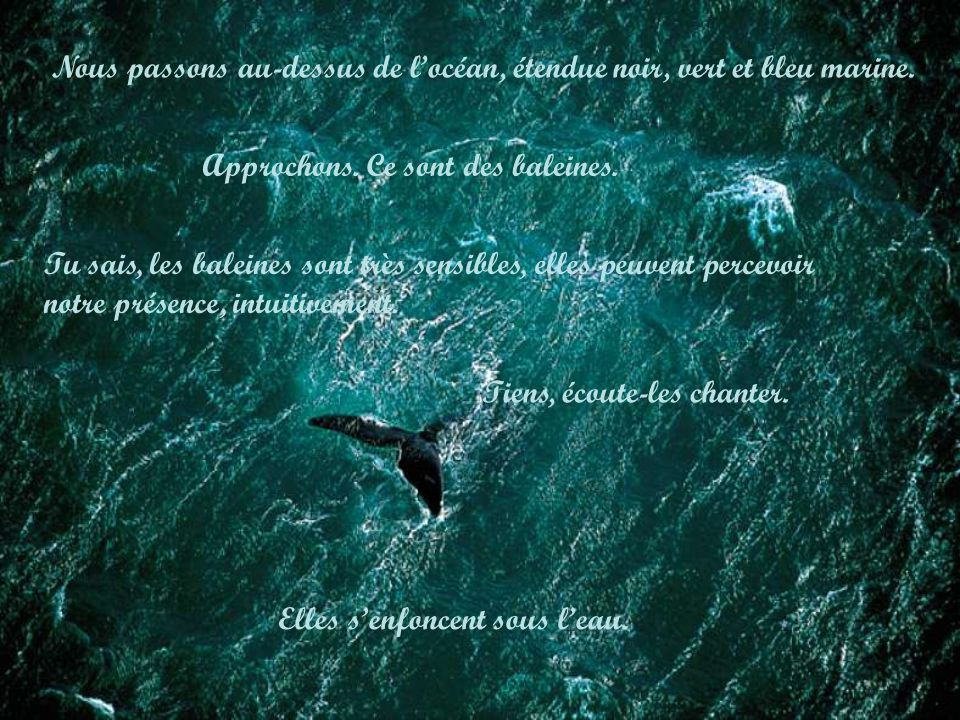 Nous passons au-dessus de l'océan, étendue noir, vert et bleu marine.
