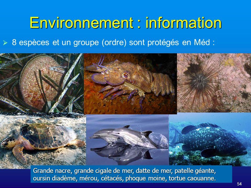 Environnement : information