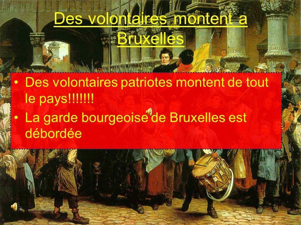Des volontaires montent a Bruxelles