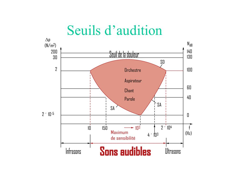 Seuils d'audition