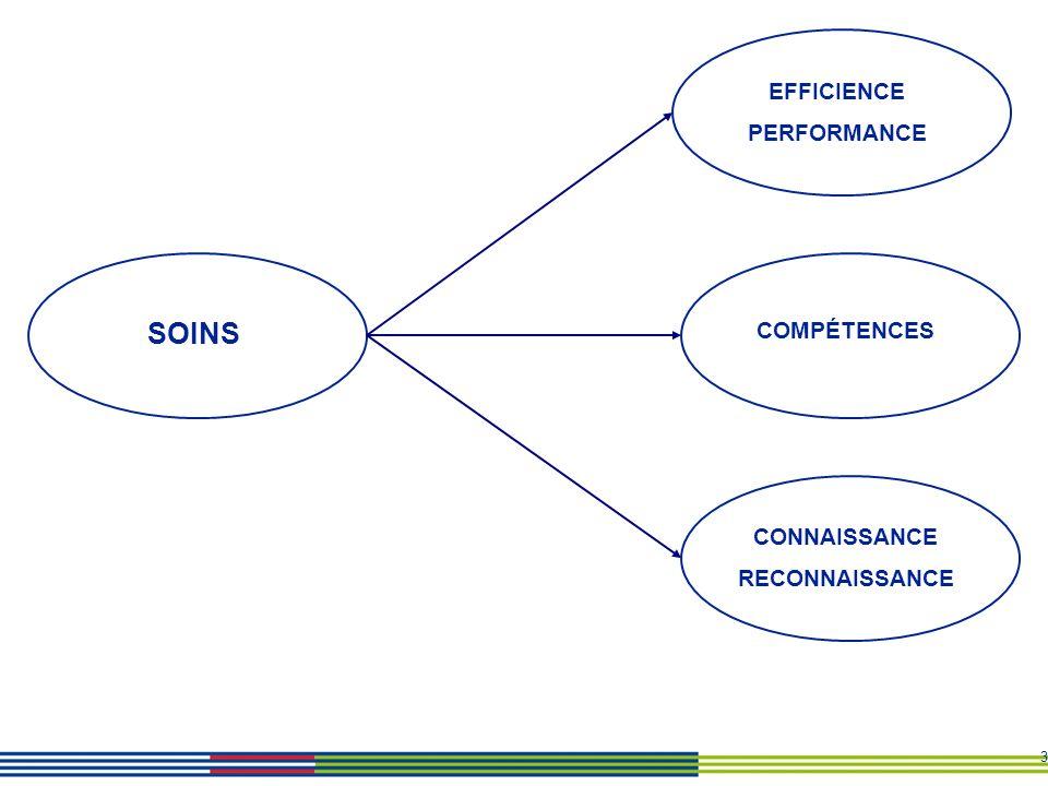 EFFICIENCE PERFORMANCE SOINS COMPÉTENCES CONNAISSANCE RECONNAISSANCE