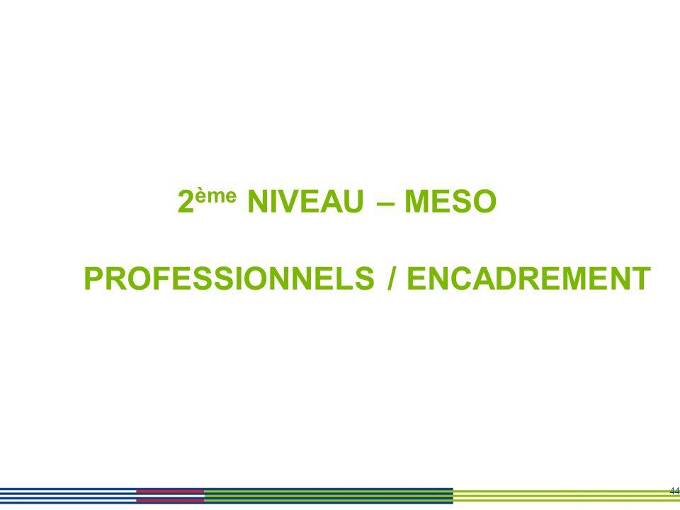 2ème NIVEAU – MESO PROFESSIONNELS / ENCADREMENT