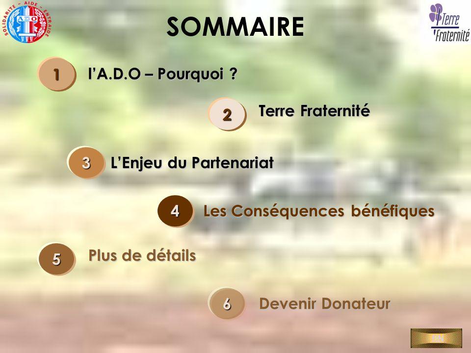 SOMMAIRE 1 l'A.D.O – Pourquoi Terre Fraternité 2 3