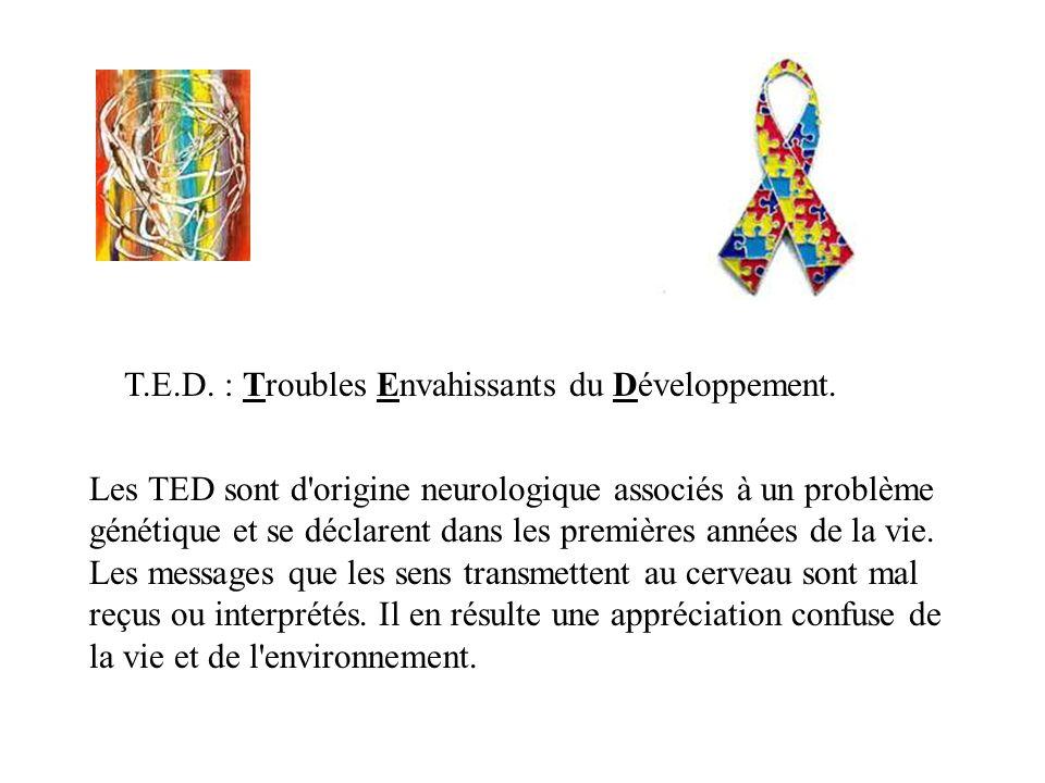 T.E.D. : Troubles Envahissants du Développement.