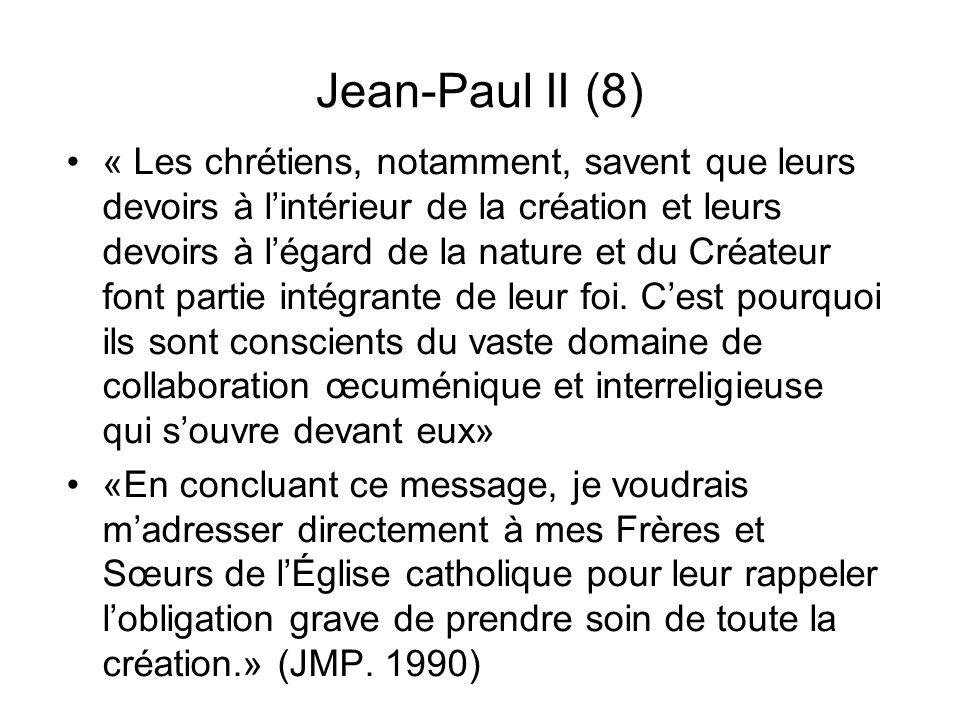 Jean-Paul II (8)