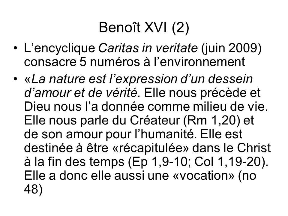 Benoît XVI (2) L'encyclique Caritas in veritate (juin 2009) consacre 5 numéros à l'environnement.