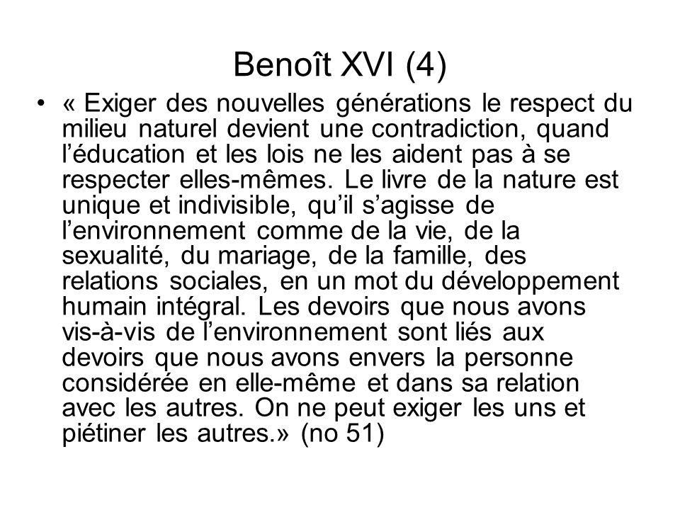 Benoît XVI (4)