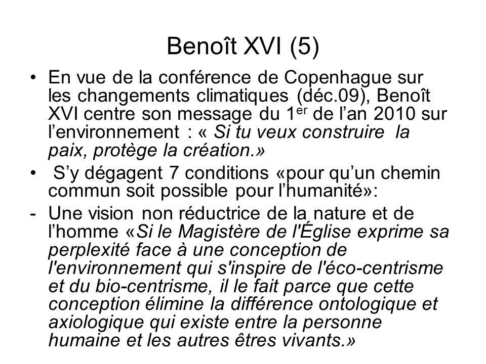 Benoît XVI (5)