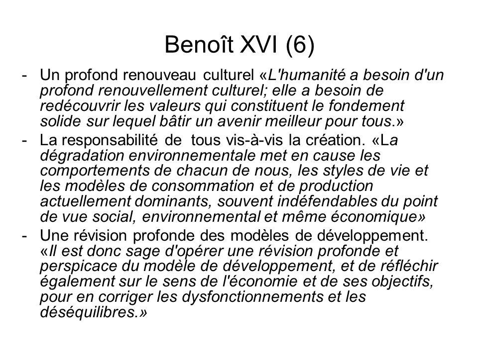 Benoît XVI (6)