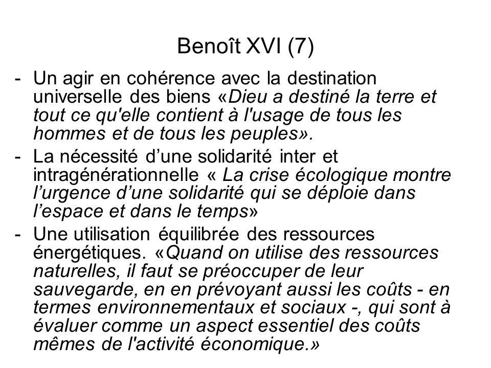 Benoît XVI (7)