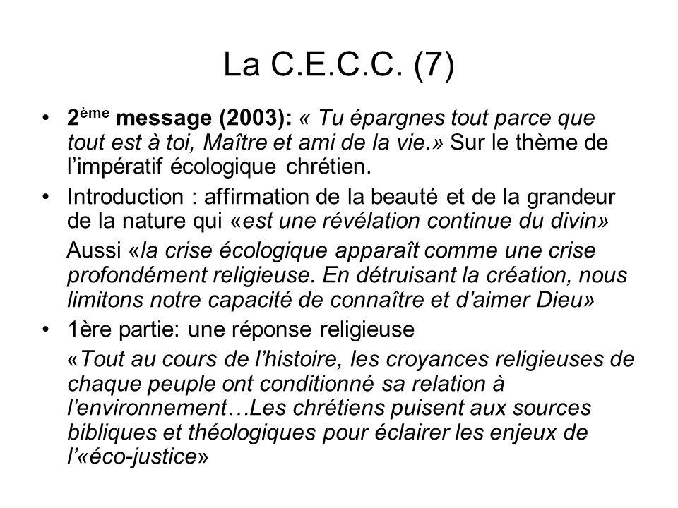 La C.E.C.C. (7)