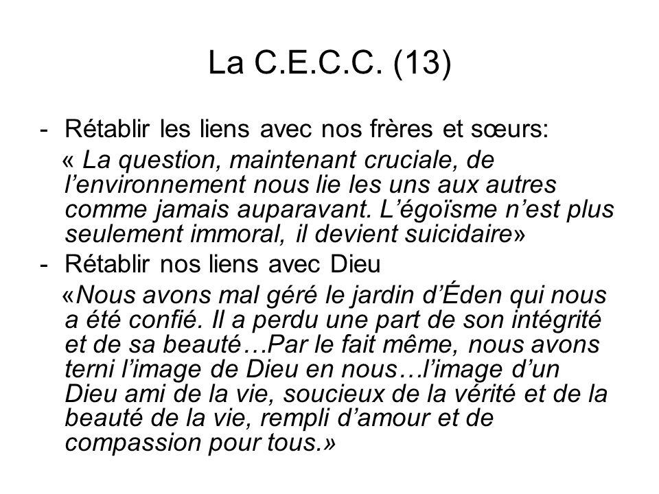 La C.E.C.C. (13) Rétablir les liens avec nos frères et sœurs:
