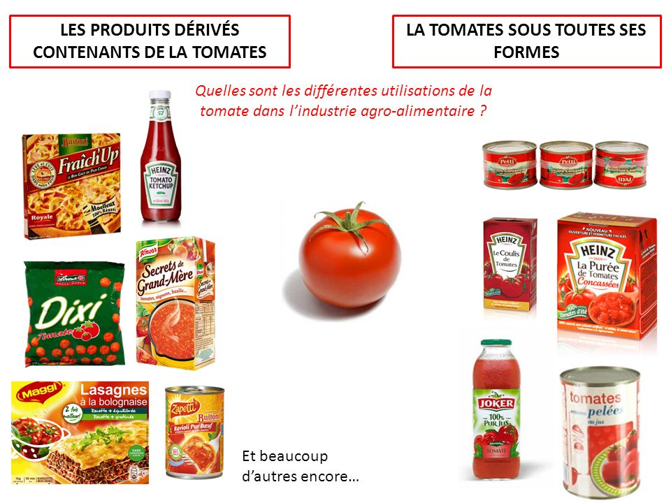 LES PRODUITS DÉRIVÉS CONTENANTS DE LA TOMATES