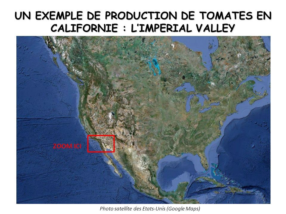 UN EXEMPLE DE PRODUCTION DE TOMATES EN CALIFORNIE : L'IMPERIAL VALLEY