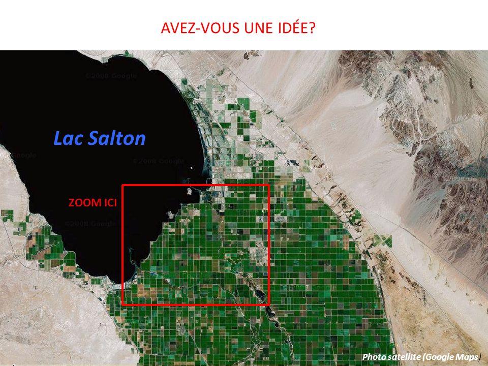AVEZ-VOUS UNE IDÉE Lac Salton ZOOM ICI Photo satellite (Google Maps)