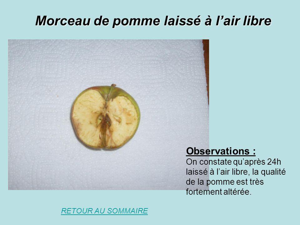 Morceau de pomme laissé à l'air libre