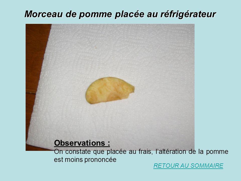 Morceau de pomme placée au réfrigérateur