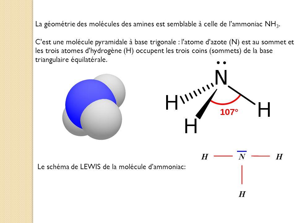 La géométrie des molécules des amines est semblable à celle de l'ammoniac NH3.