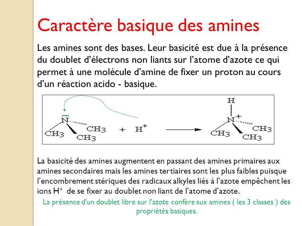 Caractère basique des amines