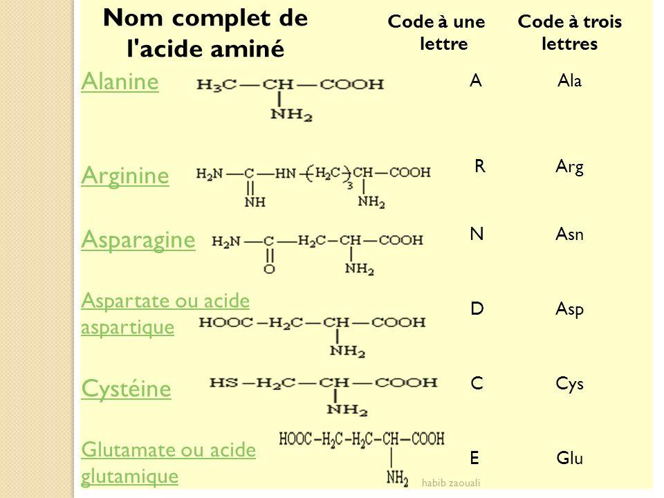 Nom complet de l acide aminé