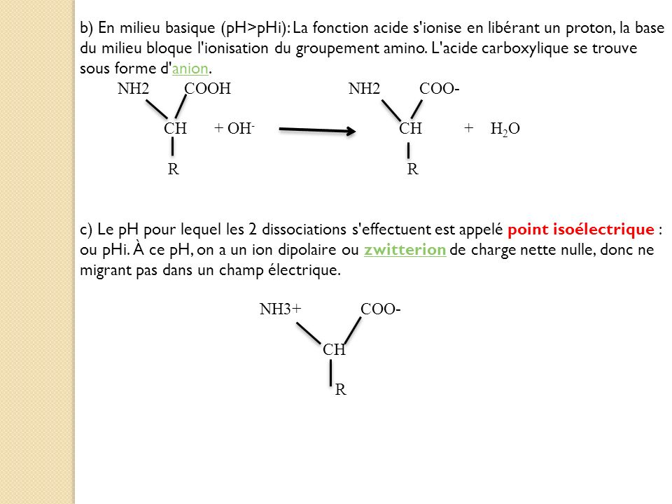 b) En milieu basique (pH>pHi): La fonction acide s ionise en libérant un proton, la base du milieu bloque l ionisation du groupement amino. L acide carboxylique se trouve sous forme d anion.