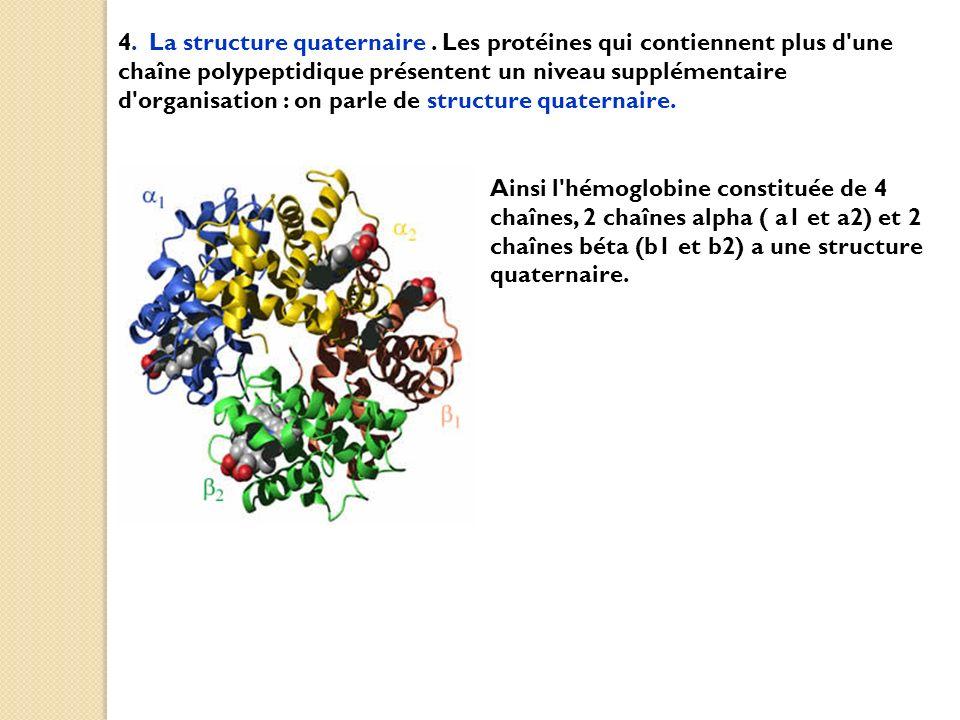 4. La structure quaternaire