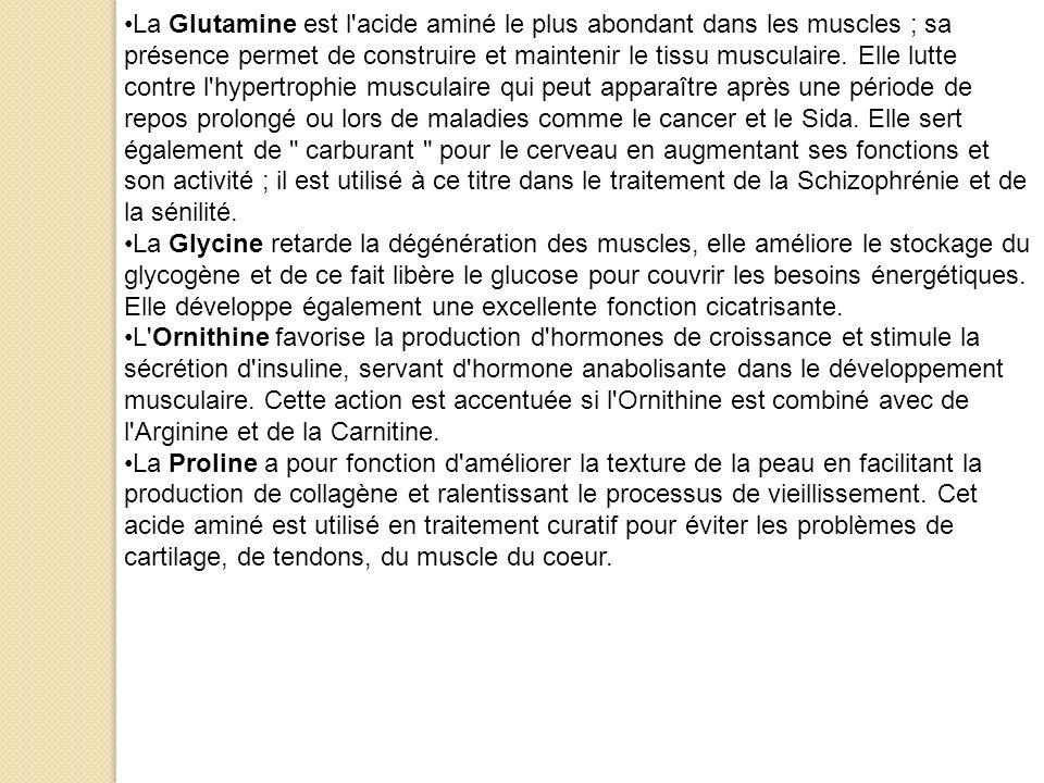 La Glutamine est l acide aminé le plus abondant dans les muscles ; sa présence permet de construire et maintenir le tissu musculaire. Elle lutte contre l hypertrophie musculaire qui peut apparaître après une période de repos prolongé ou lors de maladies comme le cancer et le Sida. Elle sert également de carburant pour le cerveau en augmentant ses fonctions et son activité ; il est utilisé à ce titre dans le traitement de la Schizophrénie et de la sénilité.