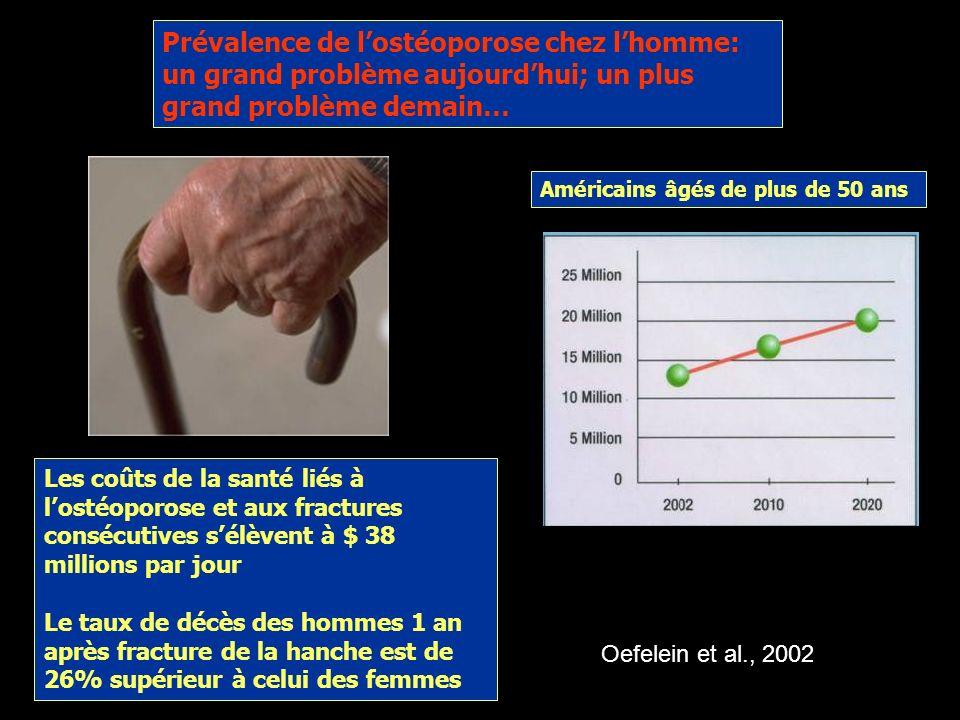 Prévalence de l'ostéoporose chez l'homme: un grand problème aujourd'hui; un plus grand problème demain…