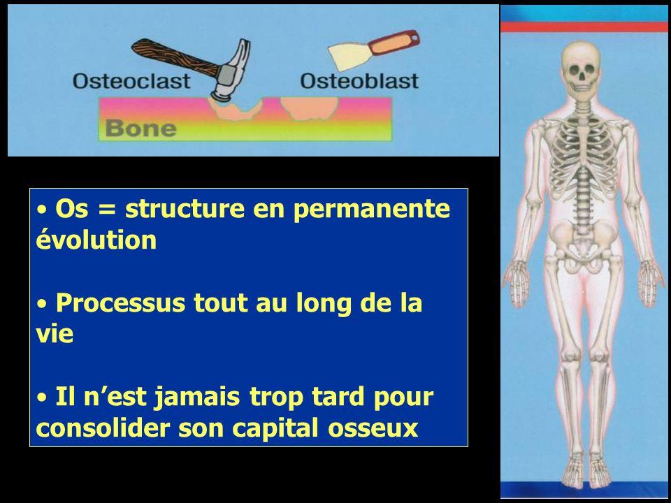 Os = structure en permanente évolution