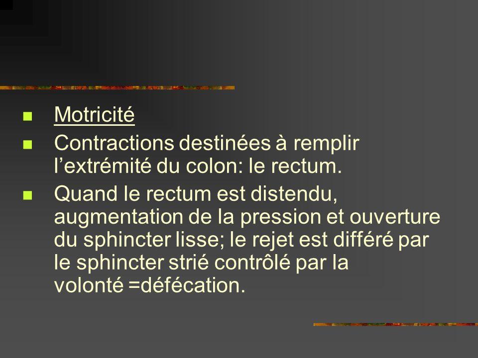 Motricité Contractions destinées à remplir l'extrémité du colon: le rectum.