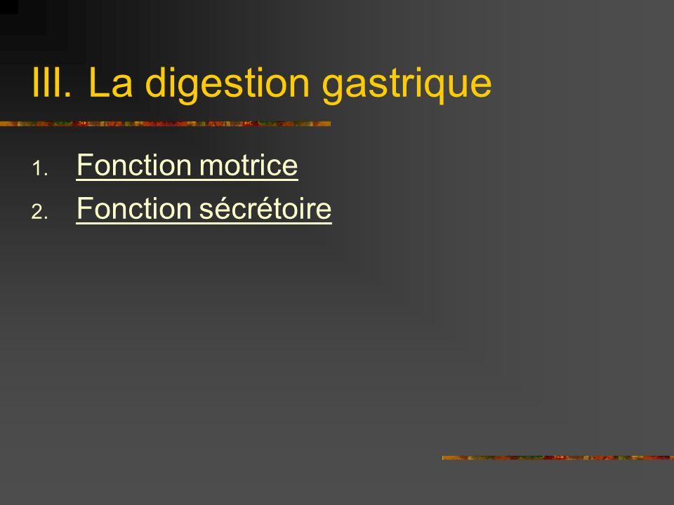III. La digestion gastrique