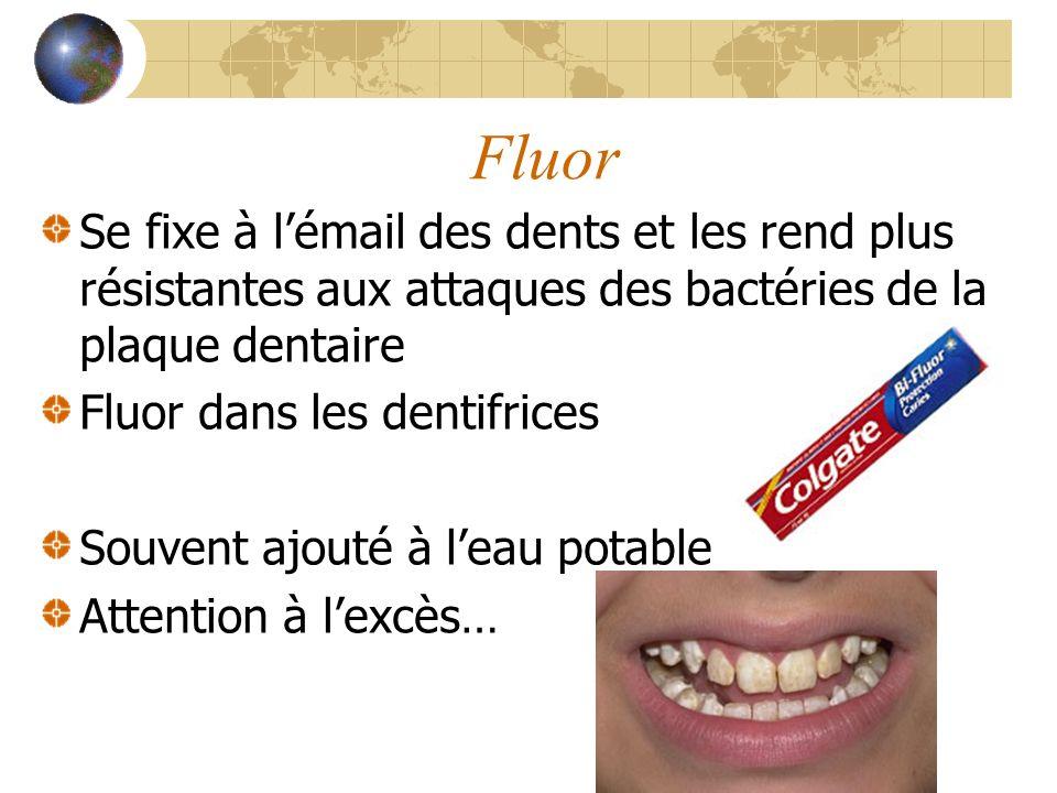 Fluor Se fixe à l'émail des dents et les rend plus résistantes aux attaques des bactéries de la plaque dentaire.