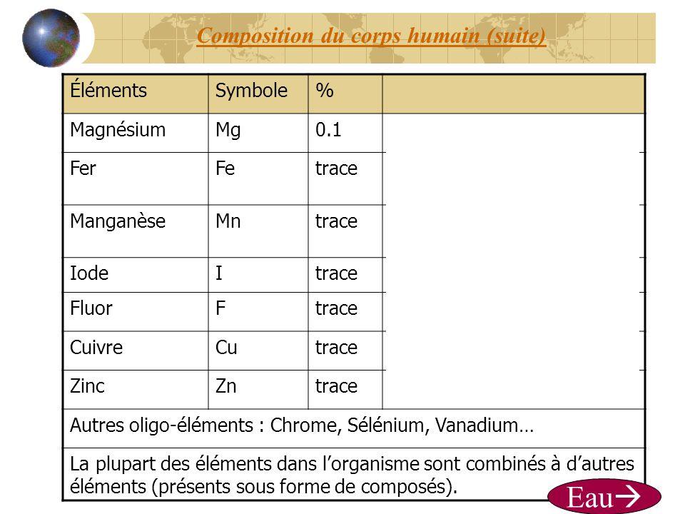 Composition du corps humain (suite)