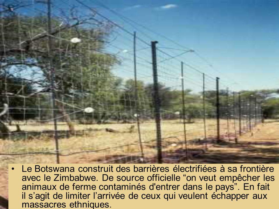Le Botswana construit des barrières électrifiées à sa frontière avec le Zimbabwe.