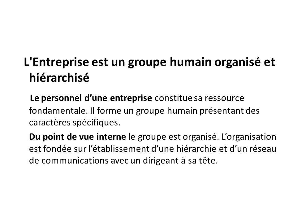L Entreprise est un groupe humain organisé et hiérarchisé