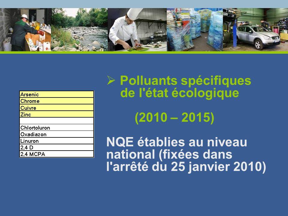 Polluants spécifiques