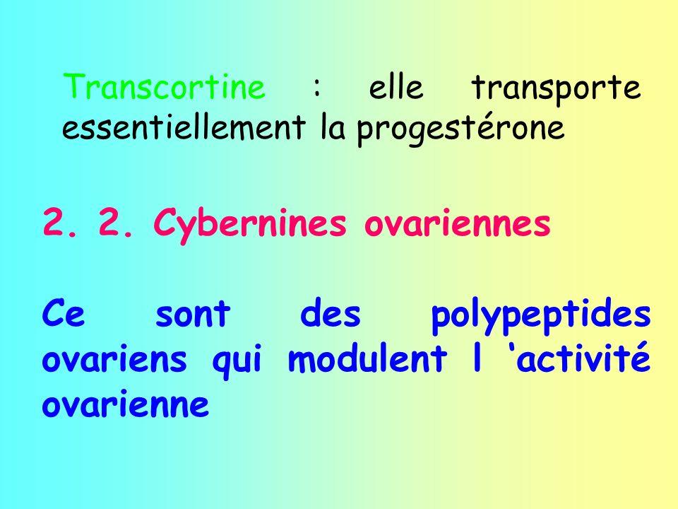 2. 2. Cybernines ovariennes