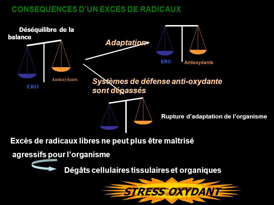 ERO STRESS OXYDANT CONSEQUENCES D'UN EXCES DE RADICAUX