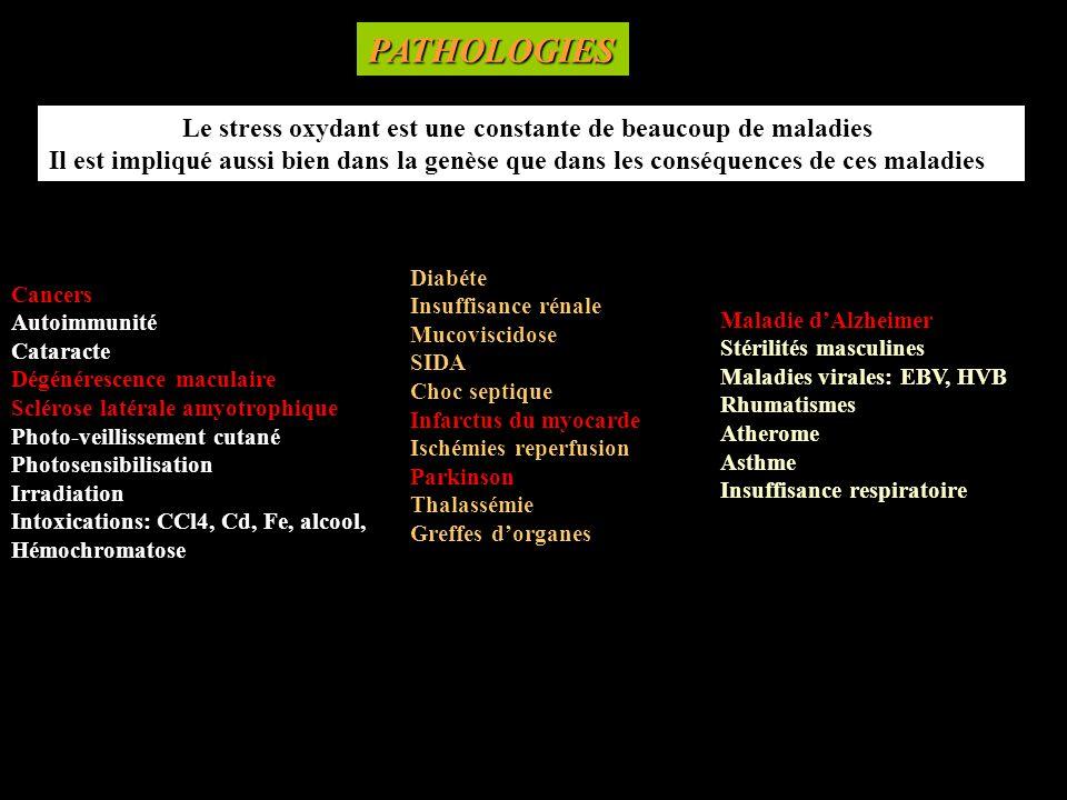 PATHOLOGIES Cancers. Autoimmunité. Cataracte. Dégénérescence maculaire. Sclérose latérale amyotrophique.
