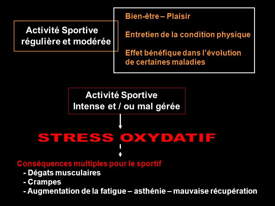 STRESS OXYDATIF Activité Sportive régulière et modérée