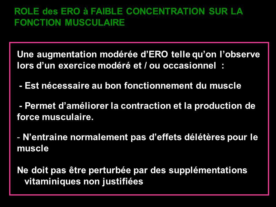 ROLE des ERO à FAIBLE CONCENTRATION SUR LA FONCTION MUSCULAIRE