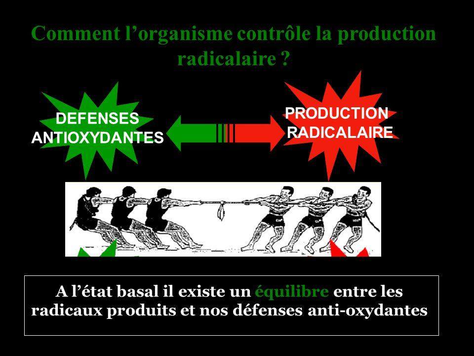 Comment l'organisme contrôle la production radicalaire