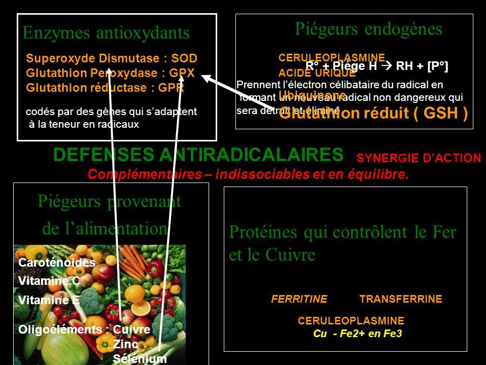 Protéines qui contrôlent le Fer et le Cuivre DEFENSES ANTIRADICALAIRES