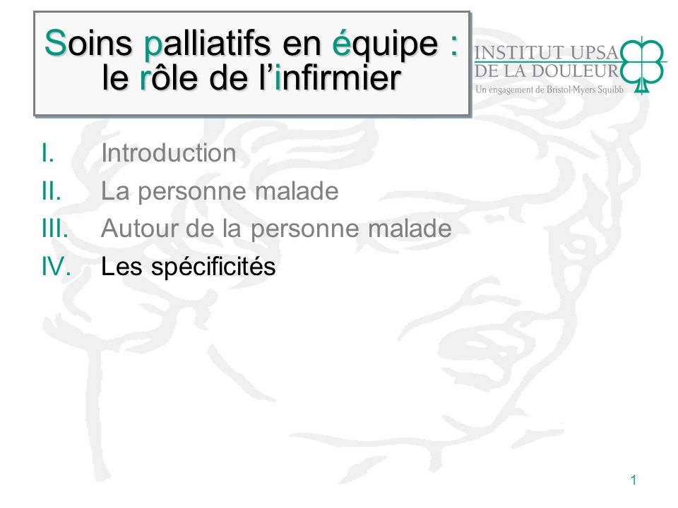 Soins palliatifs en équipe : le rôle de l'infirmier