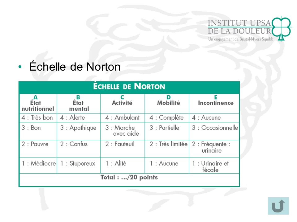 Échelle de Norton