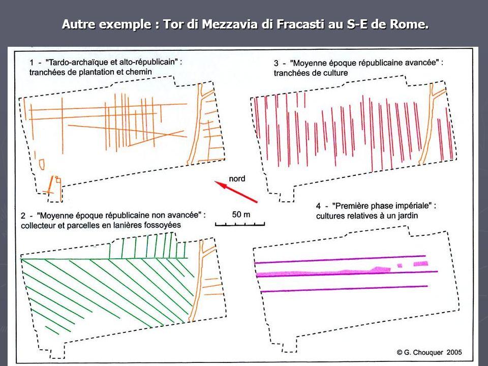 Autre exemple : Tor di Mezzavia di Fracasti au S-E de Rome.