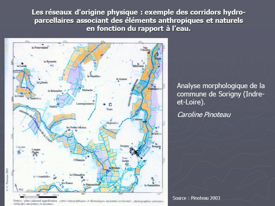 Les réseaux d origine physique : exemple des corridors hydro-