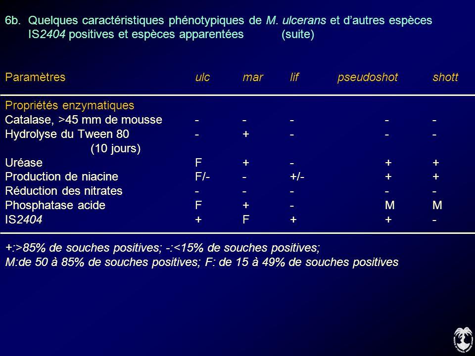 6b. Quelques caractéristiques phénotypiques de M