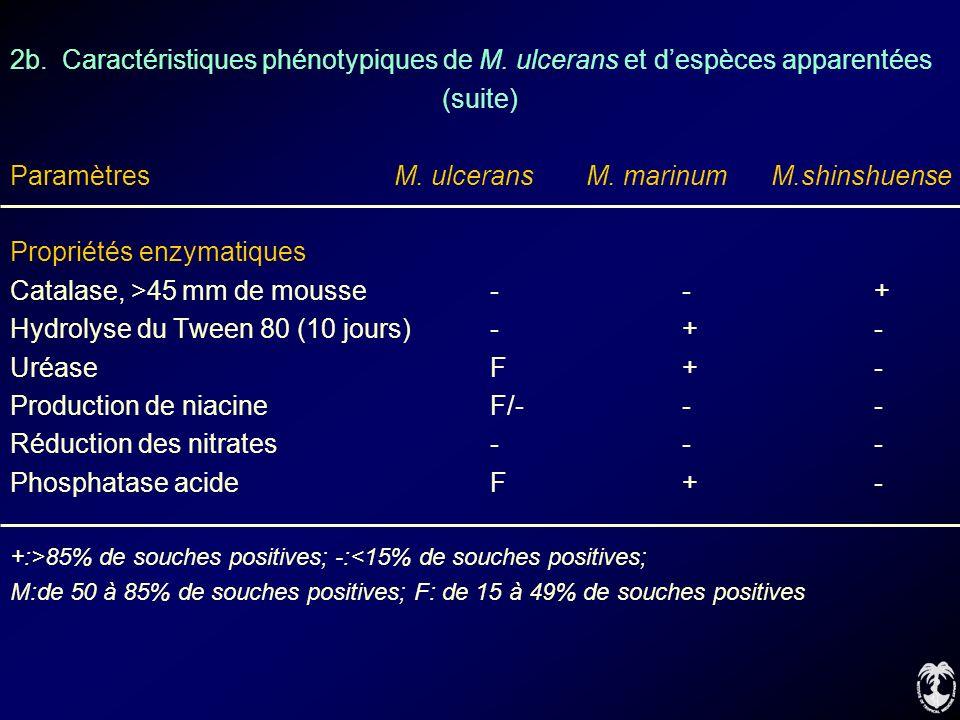 Paramètres M. ulcerans M. marinum M.shinshuense
